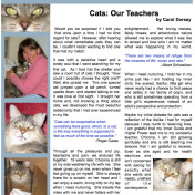 cats our teachers